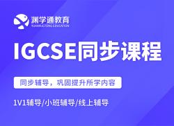 国际高中IGCSE同步课程